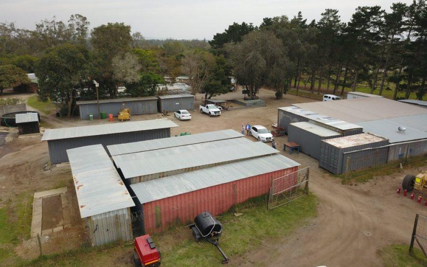 FARM ON AUCTION || PLOT 51, SEAVIEW ROAD, GREENBUSHES, PORT ELIZABETH
