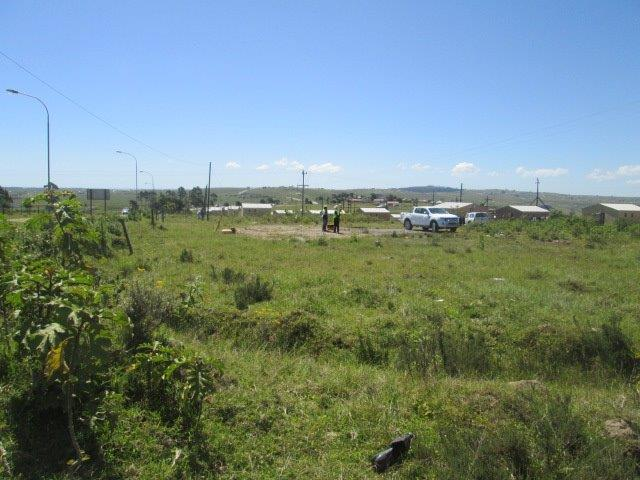 VACANT LAND || Plot On Auction in Kentani