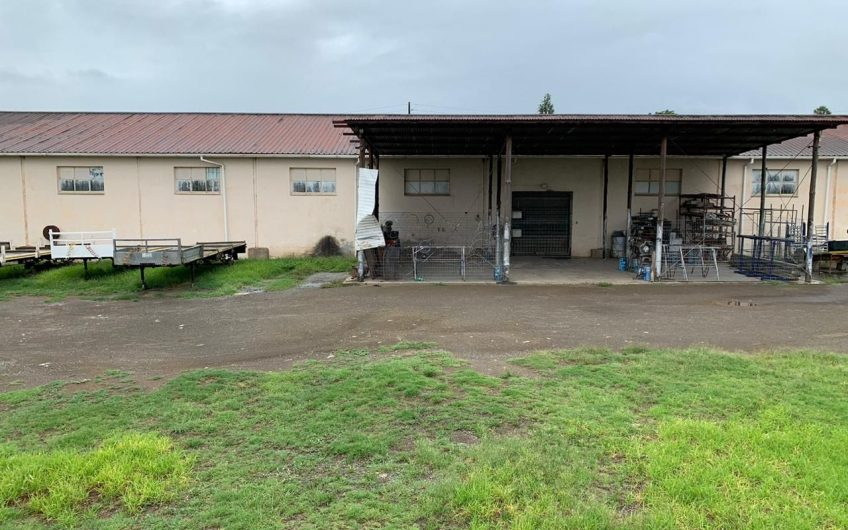 INDUSTRIAL WAREHOUSE    ON AUCTION IN KING WILLIAMS TOWN!