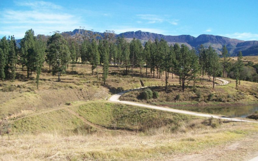 VACANT LAND    Plot On Auction in Katberg